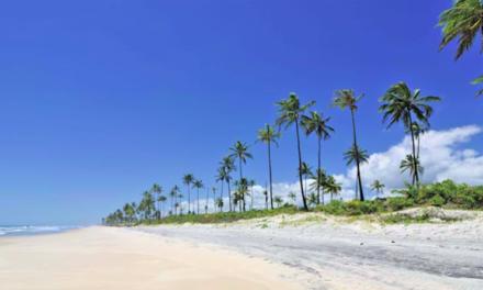 MOÇÃO DE REPÚDIO à violência contra comunidades indígenas e à negligência do poder público federal quanto à demarcação das terras indígenas no Litoral Sul da Bahia