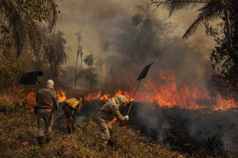 Pantanal em chamas: mais uma tragédia da política criminosa do Bolsonaro, Mourão e Ricardo Salles