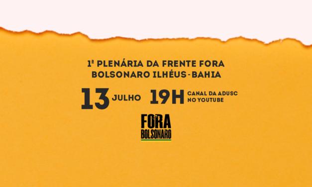 Movimento Fora Bolsonaro Ilhéus realiza plenária online